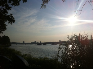 Boston Summer Sunset over the Basin. Enjoy more of these on the Renegade Rowing Team! Tue/Wed nights 6:30-8pm
