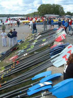 All the oars at last years Textile River Regatta!